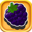 Fruit Vegetable Shadow Puzzle icon