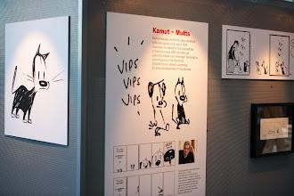 Photo: Kamut -näyttely Sanomatalossa