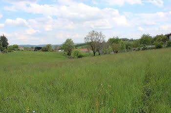 terrain à Orleix (65)