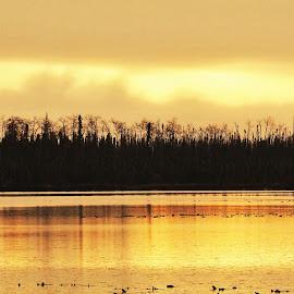 Autumn Sunset  by Patricia Phillips - Landscapes Travel ( alaska sunsets lakes autumn bottnintnin )