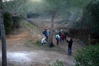 Photo: Les nouvelles routes forestières.