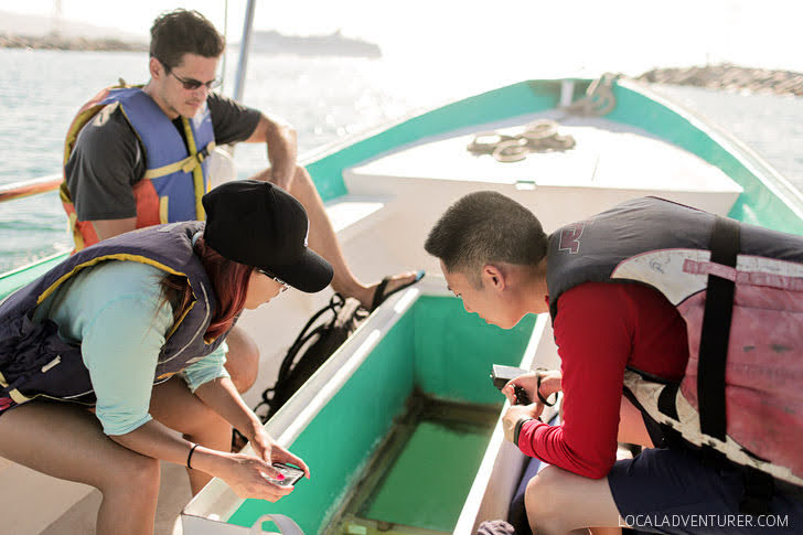 Glass Bottom Boat / Water Taxi (21 Things to Do in Cabo San Lucas Mexico + 1 Thing You Should Never Do).