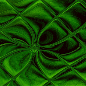 Curves by Kittie Groenewald - Abstract Patterns ( abstractlines, green,  )