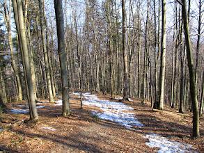 Photo: 04.Płaty śniegu na podejściu pod Rożki.