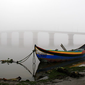 Boat in the fog by Gil Reis - Transportation Boats ( rivers, places, boats, travel, water, sea, life )