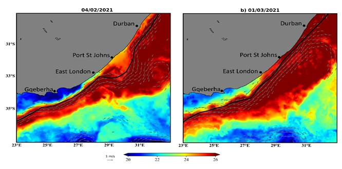 The pictures depict extreme warm water flowing down the Agulhas current as a result of a current meander causing an ocean heatwave and a large number of species deaths.