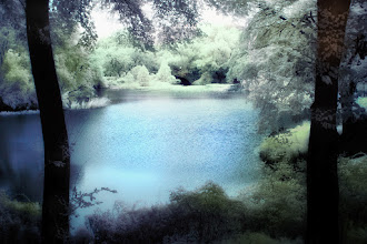 Photo: Central Park Lake Infrared Painting Downloads / Prints: http://www.beckermanphoto.com/central-park-lake-ir3-color.html