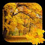 Beautiful Autumn Free Live Wallpaper Icon
