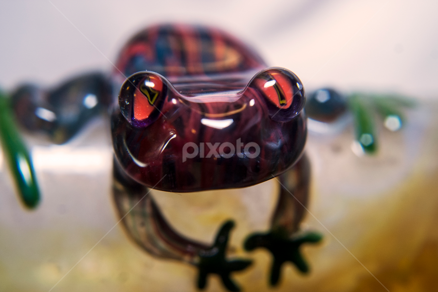 Glass Frog by Frank Matlock II - Artistic Objects Glass