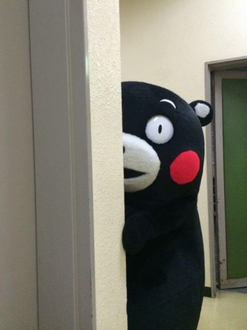 kumamon feature