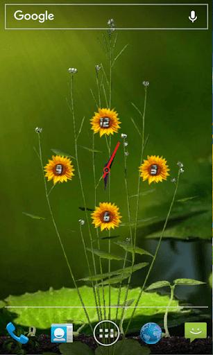 Sunflower Clock Live Wallpaper