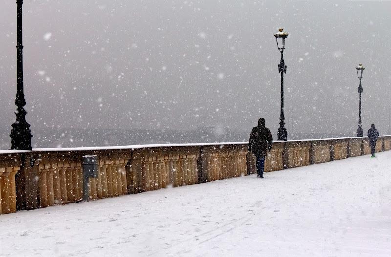 In un giorno di neve di FZATOX