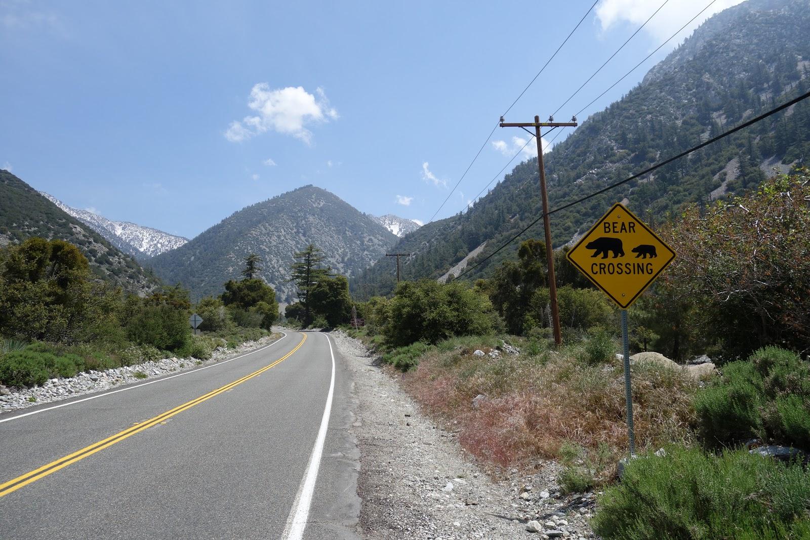 Bear sign on Mt Baldy Road
