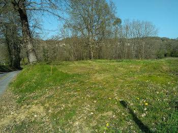 terrain à Loubejac (24)