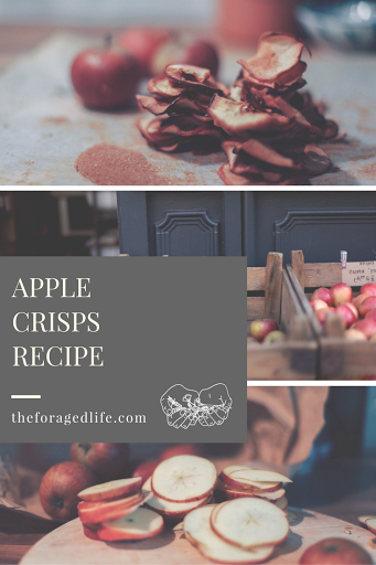 Simple apple crisp recipe. A perfect snack! | The Foraged Life