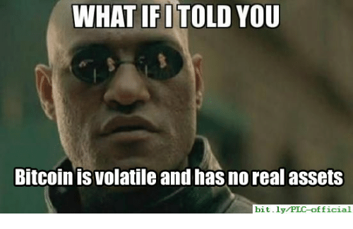 WHAT IFITOLD YOU Bitcoin Is Volatile and Has No Real Assets bitlyPIC  Official | Bitcoin Meme on ME.ME