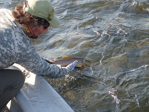 Photo: Mad River Outfitters- annual trips to the Slide Inn- Madison River Montana