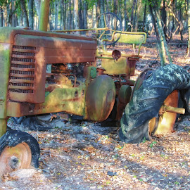 Rusty Old Tractor by Dave Walters - Artistic Objects Antiques ( farm, farm tools, rusty, antiques, bob & louise's farm,  )
