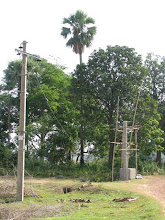 Photo: Solar streetlight under construction..is more helpful than the grid..