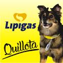 Pedidos Lipigas Quillota icon