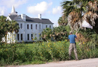 Photo: Sweeping outside the sabal palm grove.  Rabb House in background was built in 1875 by  Rio Grande riverboat captain Frank Rabb. Gorgas Science Foundation now owns the house. (House was completed in 1892.)