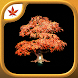 Fire Maple Games Collection - Androidアプリ