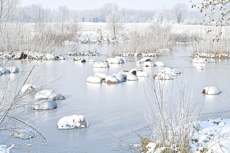 Palude ghiacciata di Inazur