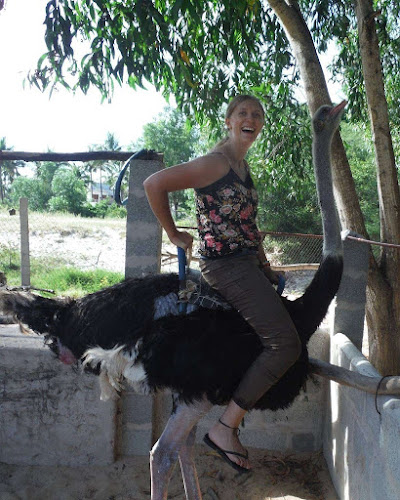 Ostrich Riding in Vietnam for solo women travelers