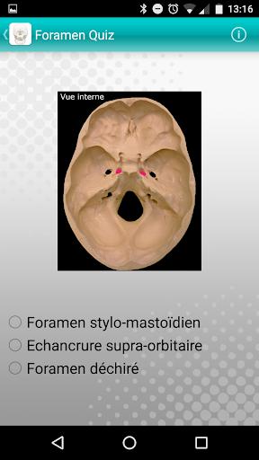 Add-on Muchacha: Foramen quiz