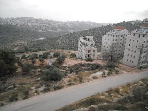 Photo: Collines de Ramallah depuis notre hébergement
