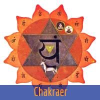 www.chakraer.dk