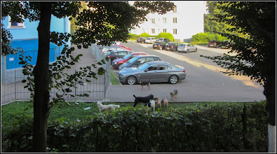 Photo: Turda, Calea Victoriei, parcare Mr.1 - 2018.09.07