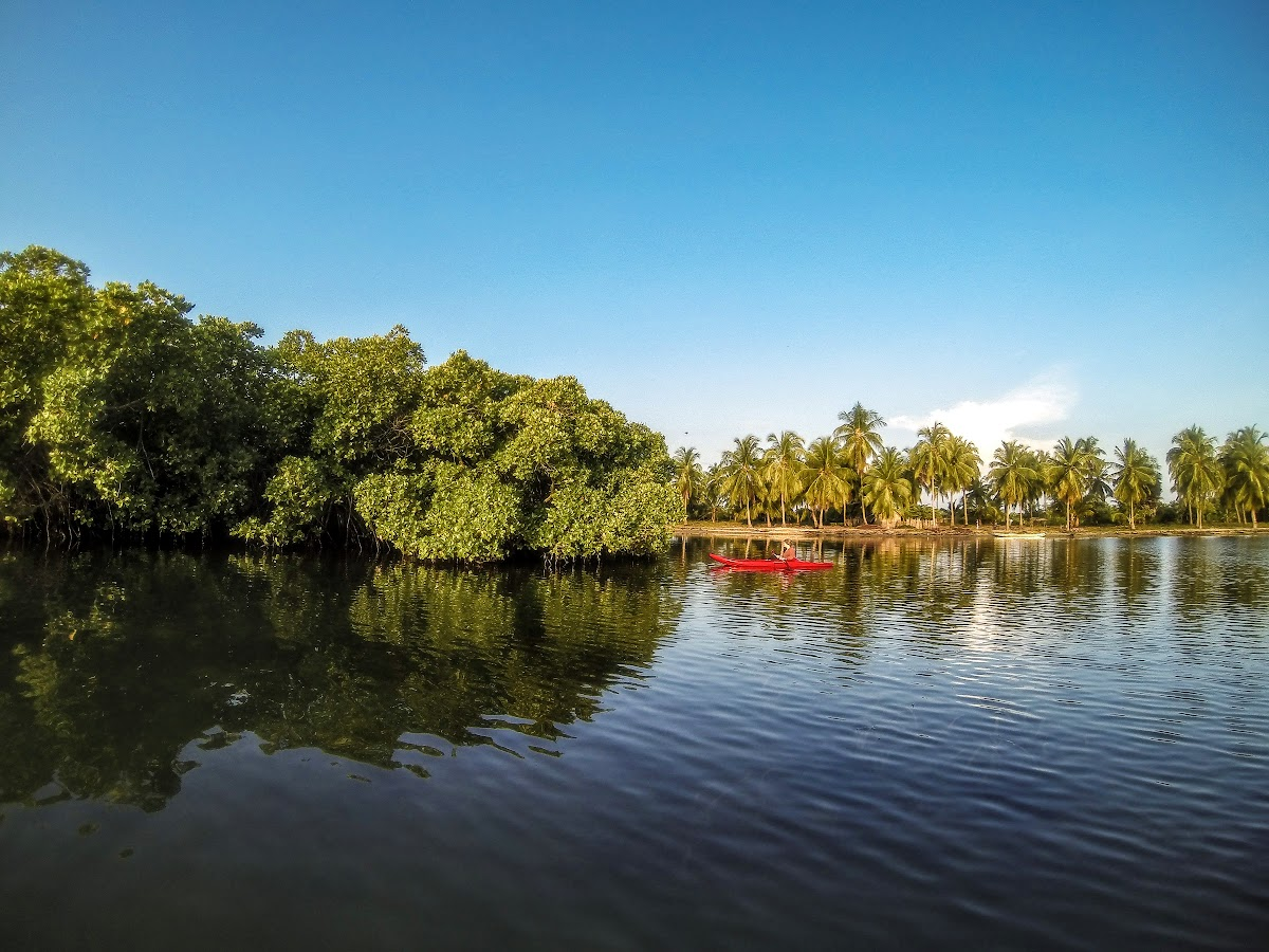 Sri. Lanka Kalpitiya Valampuri Resort. Kayaking through the Kalpitiya Lagoon mangroves