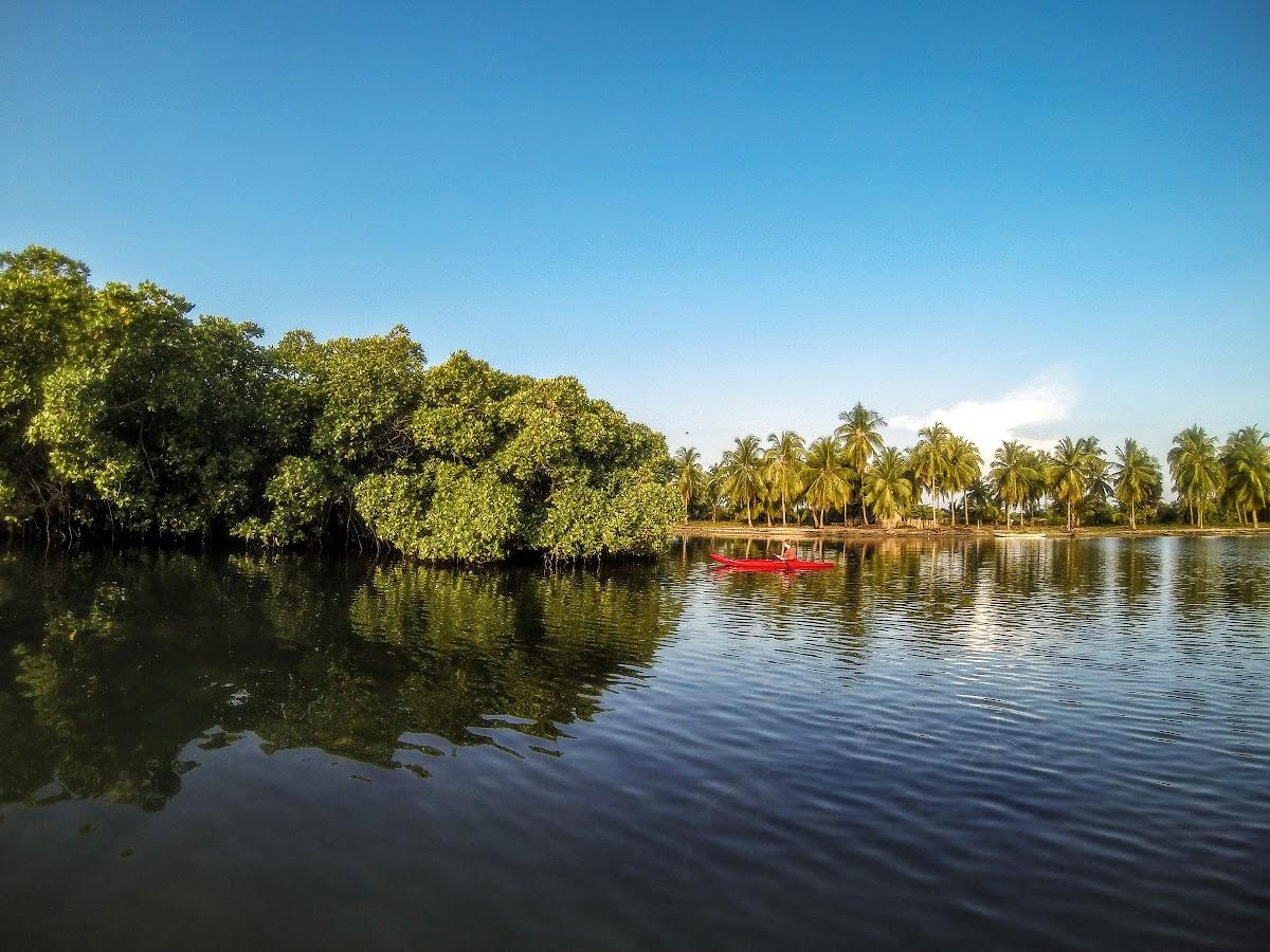 Sri. Lanka Kalpitiya Valampuri Resort. Kayaking through the Kalpitiya Lagoon mangroves
