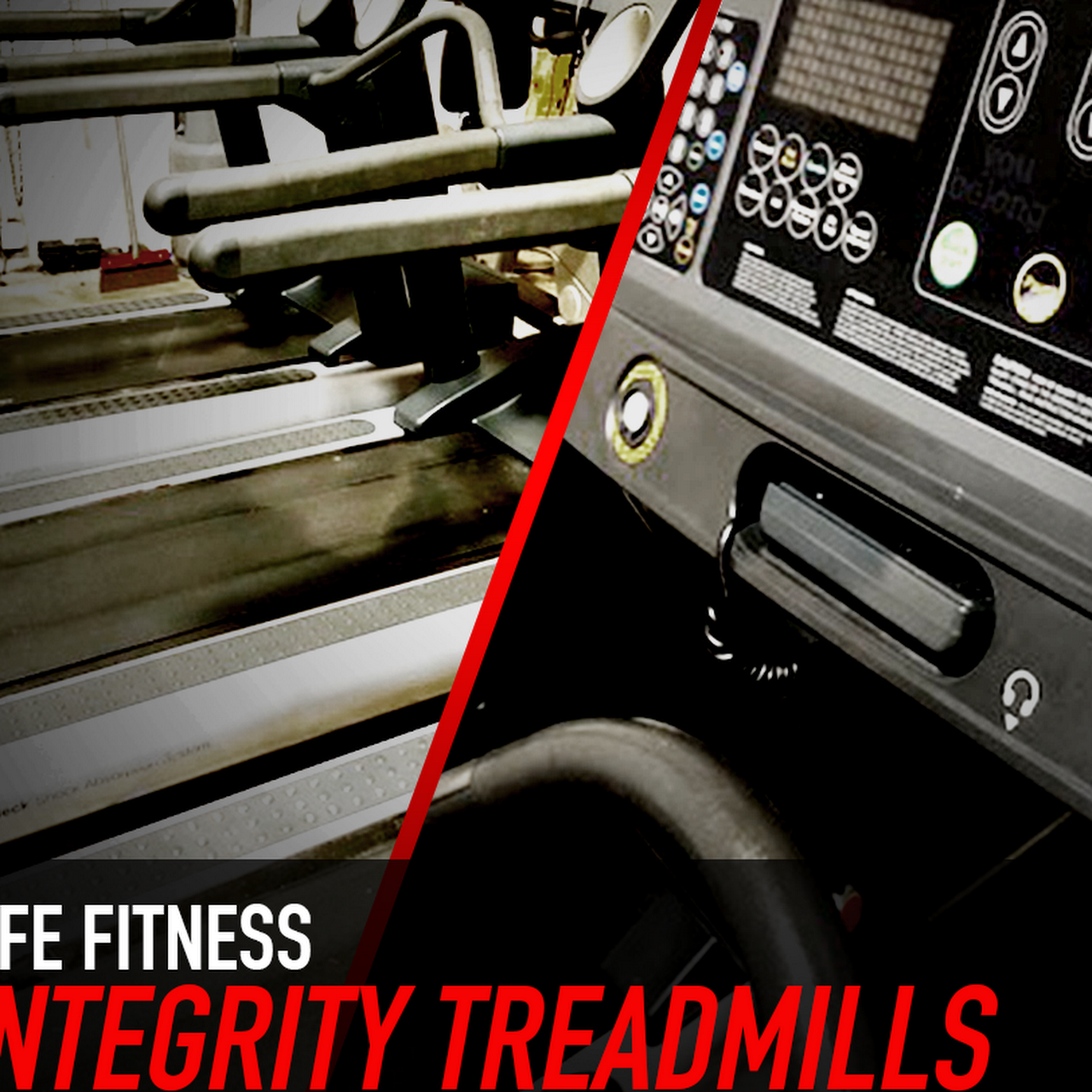 Fitness Services of Florida, Inc  - Fitness Equipment