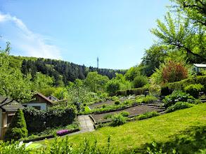 Photo: Blick vom Ollen Dreisch zur Waldlust mit dem Fernmeldeturm auf dem Riegerberg im Hintergrund.