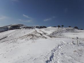積雪は10cmほど