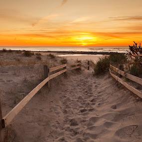 my path by João Freire - Landscapes Sunsets & Sunrises ( praia, pôr-do-sol, sunset, portugal, são torpes, paisagem. landscape, garyfonglandscapes, holiday photo contest, photocontest,  )