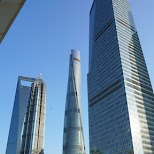shanghai tower in Shanghai, Shanghai, China
