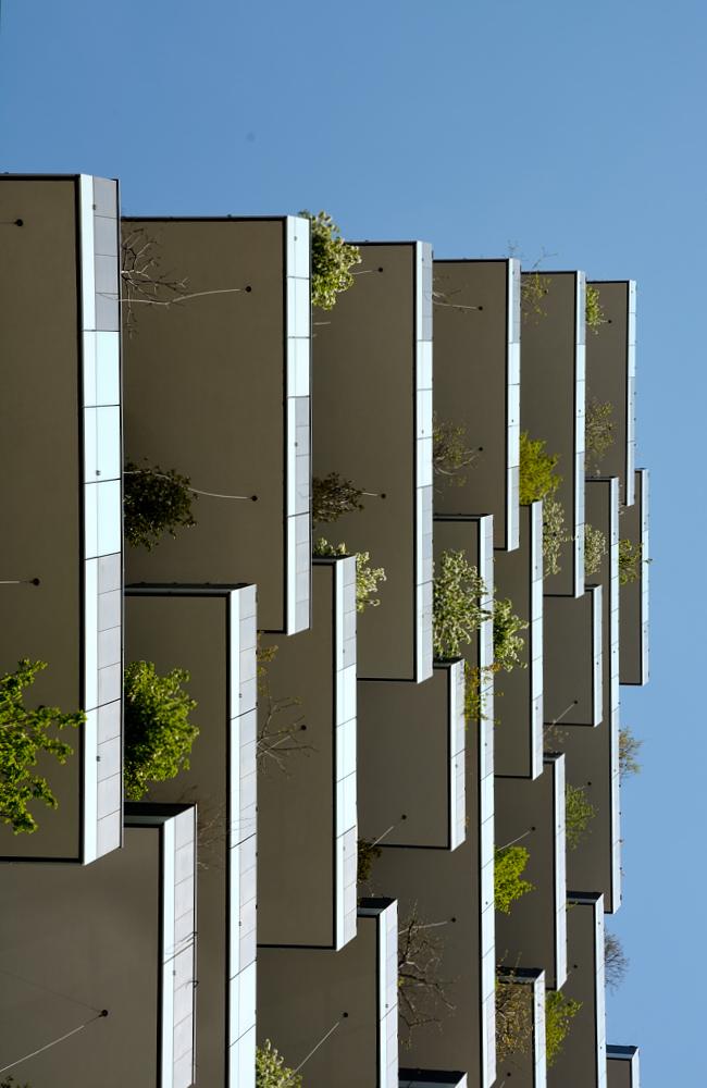 Il bosco verticale di Luca Mandelli