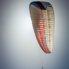 Paraglider by Gordon Bishop - Sports & Fitness Other Sports ( sky, fly, paragliding, flying, air, sport, wind )