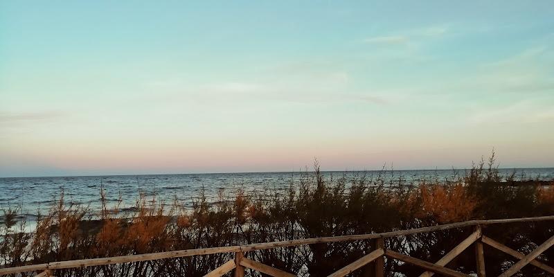 Il mare oltre la siepe di ema855