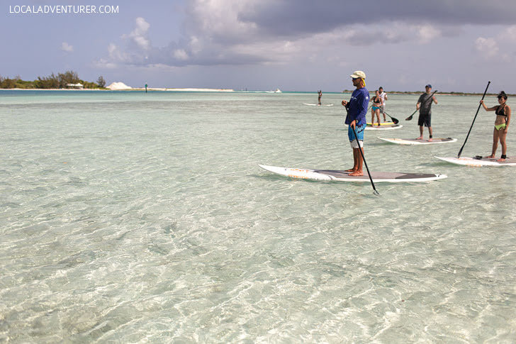Stand Up Paddleboarding through the Mangroves (Best Things to Do in Turks and Caicos).