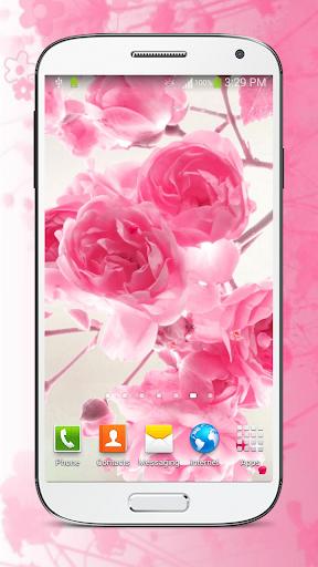 粉紅色的花朵 動態壁紙 - 粉紅色花朵 現場壁紙