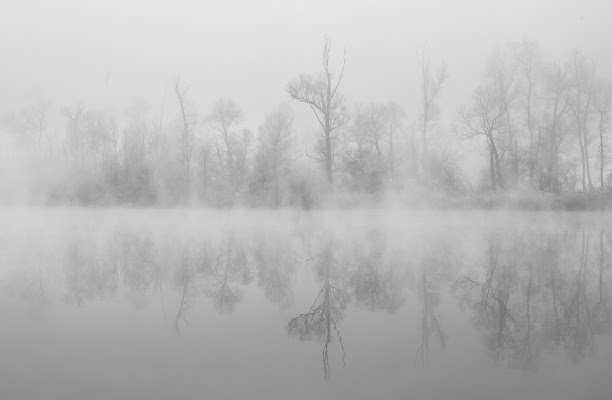 nebbia sul fiume di Francescogiacomo