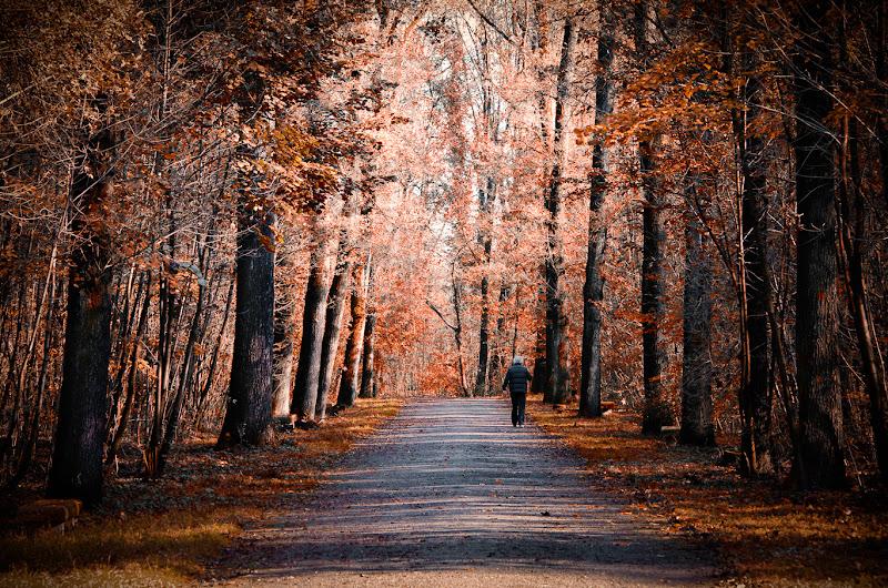Walking by yourself di AliceB