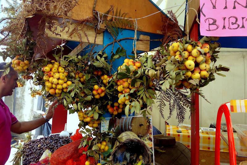 sapori e colori d'autunno di giusy