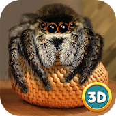 Spider Pet Life Simulator 3D