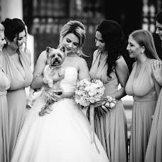 Wedding photographer Denis Efimenko (Degalier). Photo of 13.08.2018