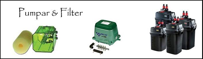 Pumpar & Filter